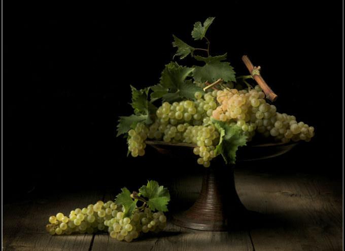 Renato Marcialis: Cultura per il cibo e per la fotografia