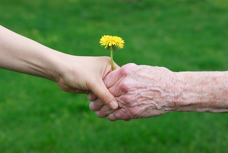 Longevità: I segreti per vivere 100 anni e più