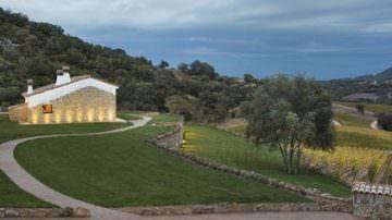 Cantina Siddùra in Gallura: buon vino ed ecologia con le viti che parlano
