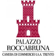 Logo Palazzo Roccabruna -
