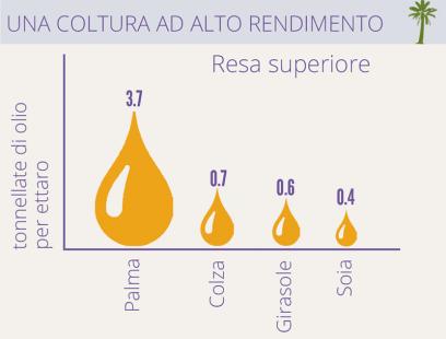 Redditività rispetto altre coltivazioni di oli