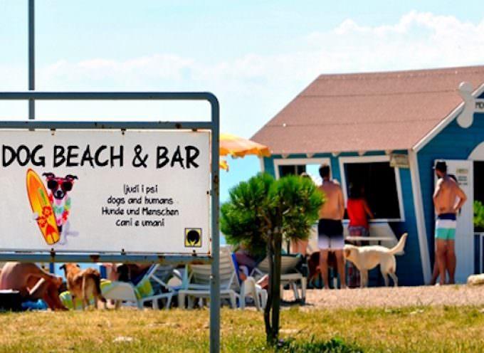 Croazia: Monty's Dog Beach and Bar – in vacanza col nostro cane
