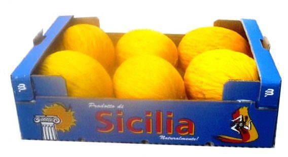 imballaggio melone giallo