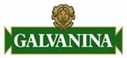 logo Galvanina Rino Mini, Galvanina: il Premio Sofi Award 2016 vinto a New York è di tutti noi!