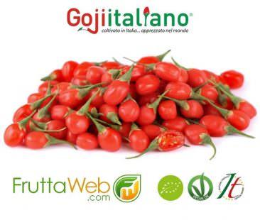 Goji Italiano su FRUTTAWEB.COM