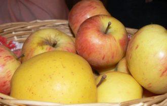 Tre mele al giorno riparano i danni da fumo