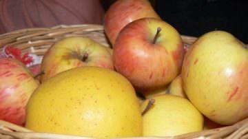 Cibi Salva Cuore: la mela