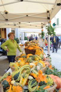 festa-della-zucca-foiano-della-chiana-ar-3