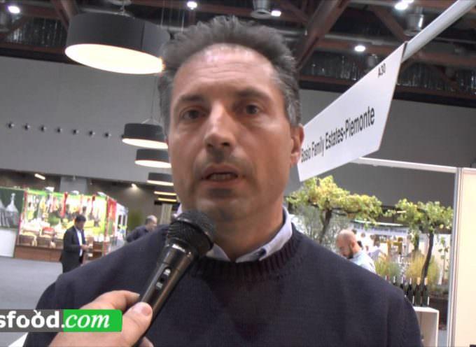Marco Giannoni, Presidente Consorzio Vini Cortona (Video)