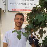 Puglia: Un milanese in stage al Sud, nel Salento del Negroamaro