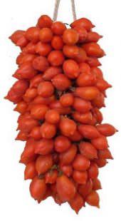 pomodorini-del-piennolo-del-vesuvio