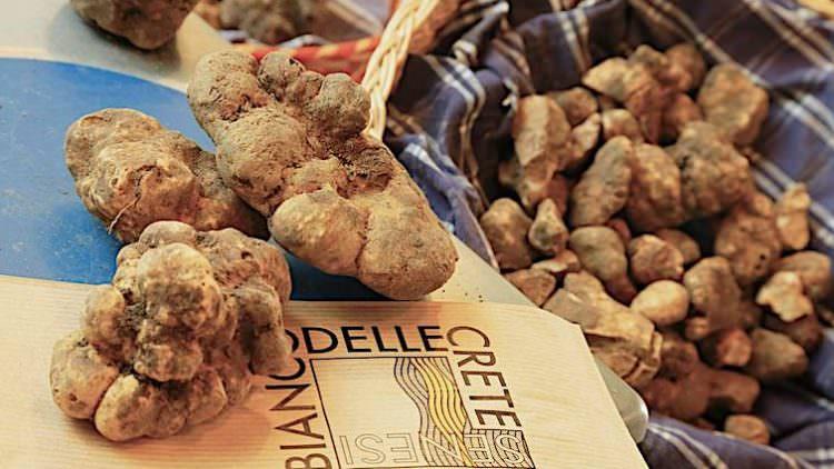 Mostra Mercato del Tartufo Bianco: Primo Olio, Chianina, Treno Natura, Brunello…