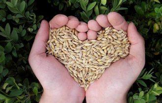 Terra Madre Day nell'ex Lanificio con Slow Food