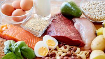 Proteine vegetali e proteine animali: indispensabili al nostro organismo