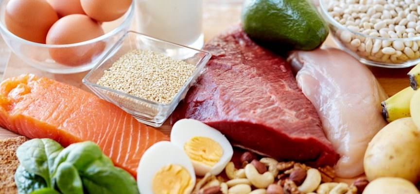 Risultati immagini per proteine vegetali e animali
