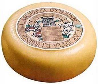 casciotta d'Urbino