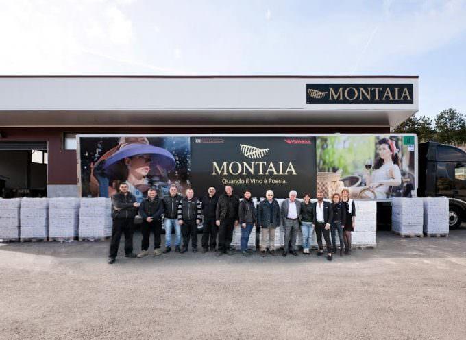 Montaia: Inviate diecimila bottiglie di vino per i terremotati del centro Italia