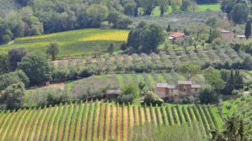 I migliori Oli e Vini in degustazione all'Hotel Principe di Savoia