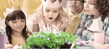 i bambini e le piante