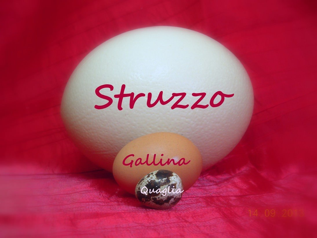 """Eggs Bistrot: al posto di """"Pianostrada"""" a Trastevere"""