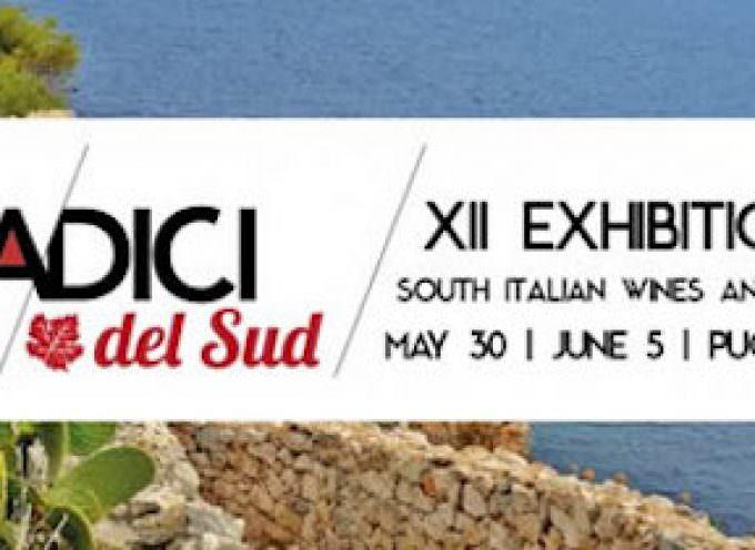 I Cinesi a Radici del Sud 2017 – Sannicandro di Bari, 30 maggio – 5 giugno