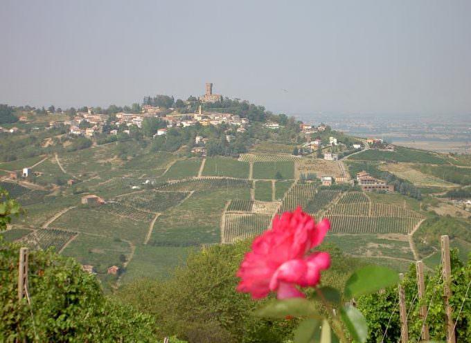 Passeggiata tra le vigne del Buttafuoco… e poi in cantina!