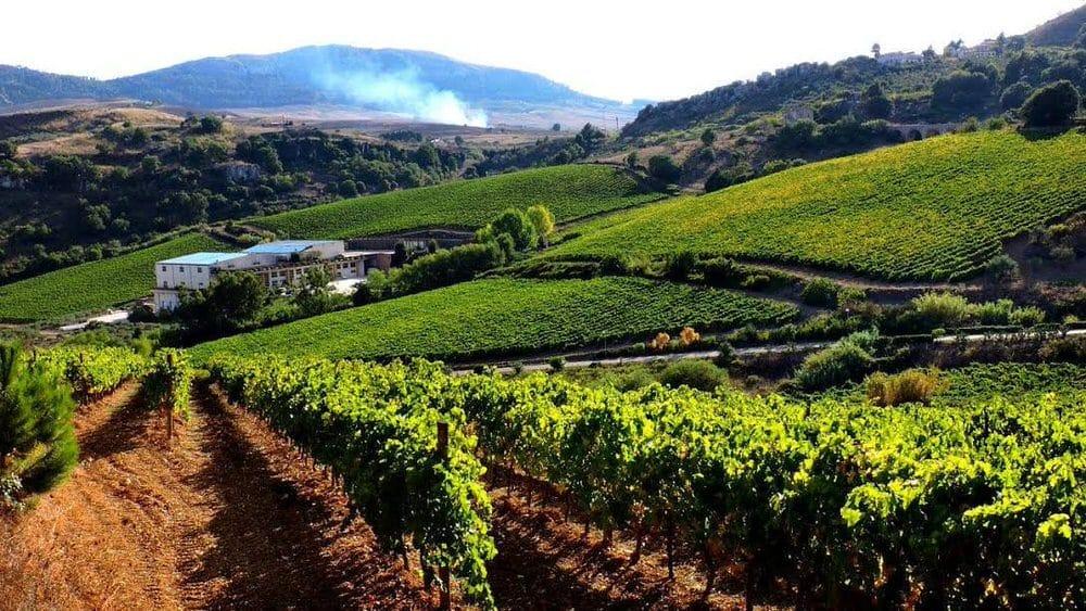 Baglio di Pianetto: La Maison del Vino del Conte Marzotto compie 20 anni