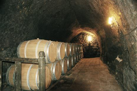 winery-393060_1280