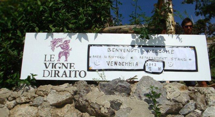 Costiera Amalfitana: Wine Tour alle Vigne di Raito