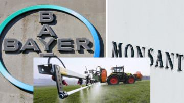 Fusione Bayer e Monsanto in stand by: questo matrimonio non sa da fare…