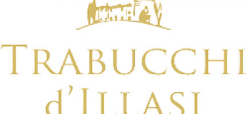 Trabucchi San Colombano – Olio extravergine d'oliva Dop Veneto