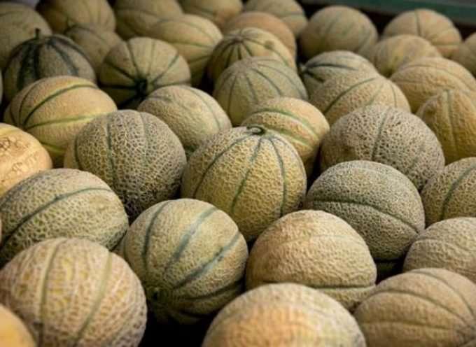 Australia, Meloni killer. Anche in Italia?