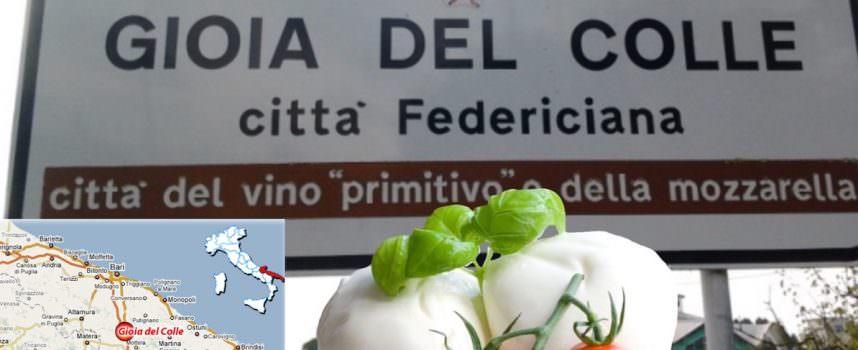 Mozzarella D.O.P. di Gioia del Colle … mozzata dalla Campania?