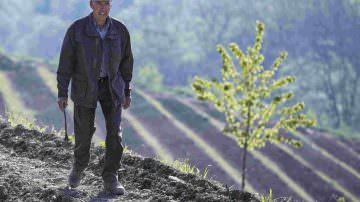 JOSKO GRAVNER: A DEDNO SI AVVERA IL SOGNO DI UN GIARDINO VITATO