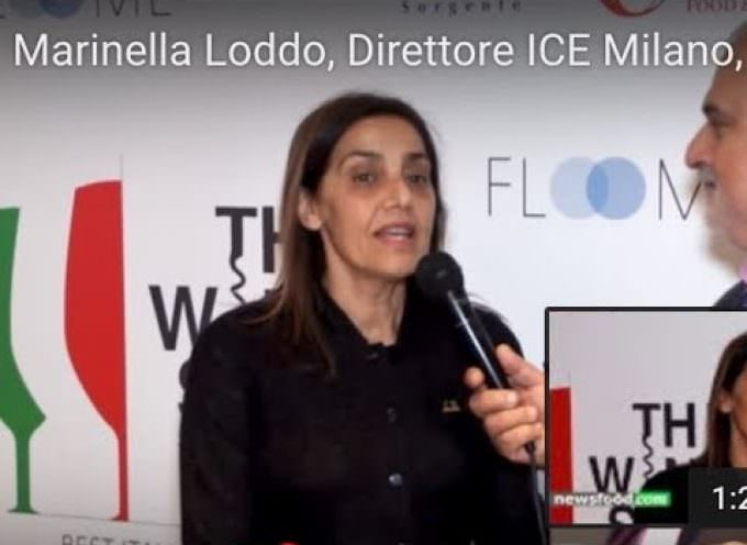Marinella Loddo, direttore ITA Italian Trade Agency Milano al BIWA 2017 (Video intervista)