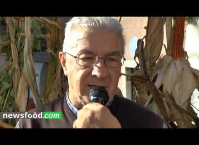 Storo, Festival della Polenta 2017: Vigilio Giovanelli (Video)