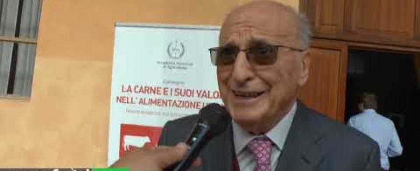 Vincenzo Russo, Prof. Emerito – Alma Mater Studiorum – Bologna
