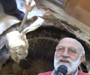 Apertura Fossa dei Formaggi di Renato Brancaleoni a Roncofreddo (Video)