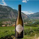 Sauvignon Trentino Doc 2016, La-Vis e Valle di Cembra