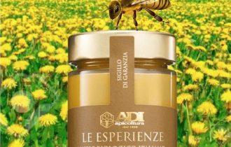 Le Esperienze di ADI, miele millesimato del 'pastore di Api' d'Abruzzo