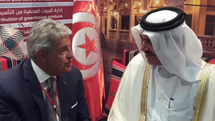 Qatar siti di incontri gratuiti