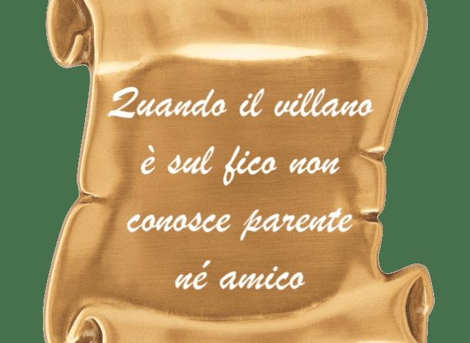Tutto su fico, dai primordi al FICO di Bologna (parte 2a)