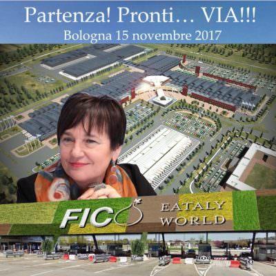 Farinetti presenta Fico: luogo vero, racconta cibo dall'origine