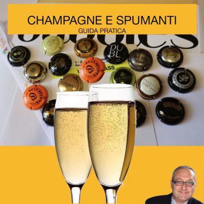 Come scegliere Spumanti e Champagne: guida pratica