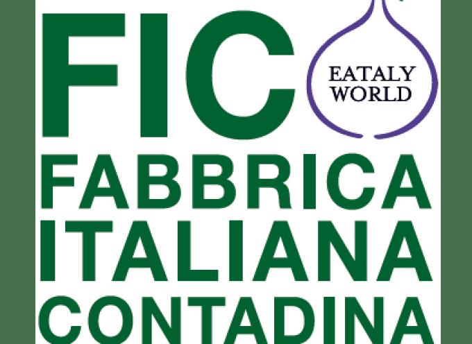 FICO Eataly World: A fine gennaioquasi 750.000 visitatori