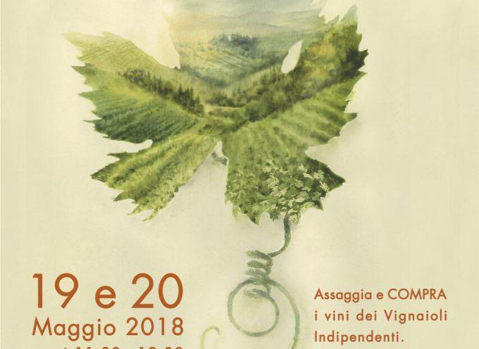 FIVI A ROMA: 200 VIGNAIOLI A CINECITTA'
