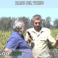 Riso Carnaroli riserva… Riserva San Massimo nel Parco del Ticino (Video)