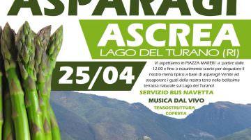 Asparagi a due passi dal Lago del Turano, è festa ad Ascrea il 25 aprile