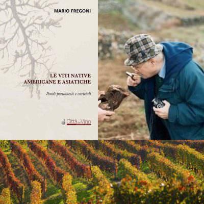 Prof. Mario Fregoni: Le viti native americane e asiatiche