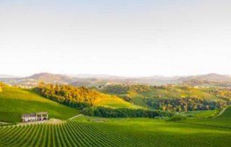 Bubble's Italia Magazine a Vinitaly 2018: L'Oltrepo Pavese (Video)